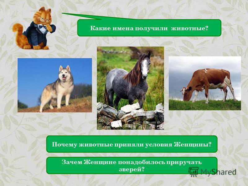 Какие имена получили животные? Почему животные приняли условия Женщины? Зачем Женщине понадобилось приручать зверей?