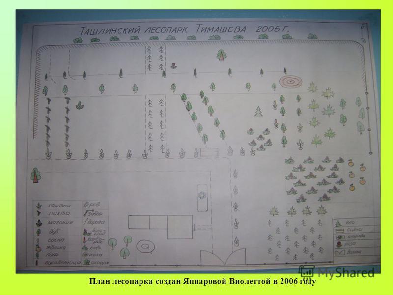 План лесопарка создан Яппаровой Виолеттой в 2006 году