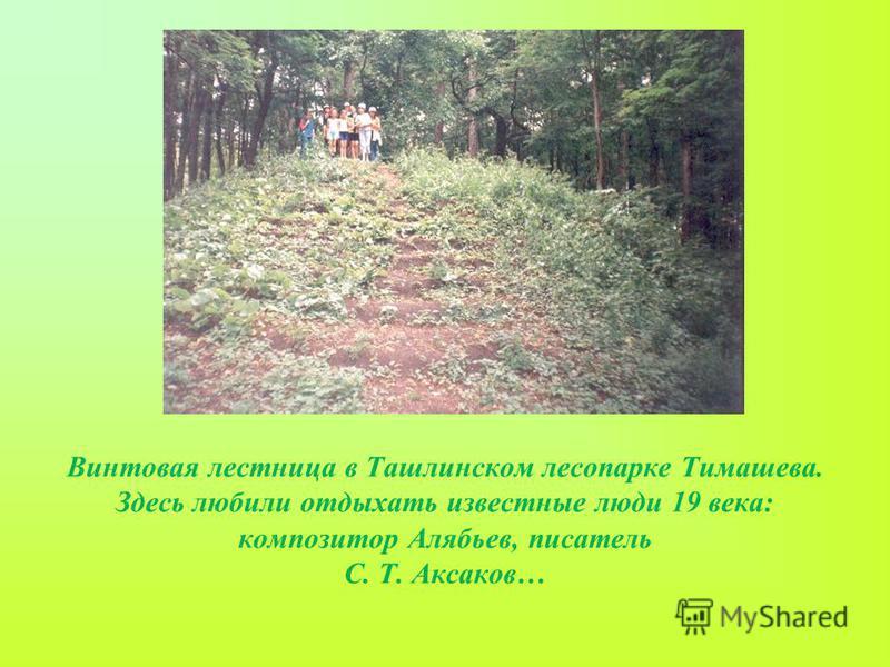 Винтовая лестница в Ташлинском лесопарке Тимашева. Здесь любили отдыхать известные люди 19 века: композитор Алябьев, писатель С. Т. Аксаков…