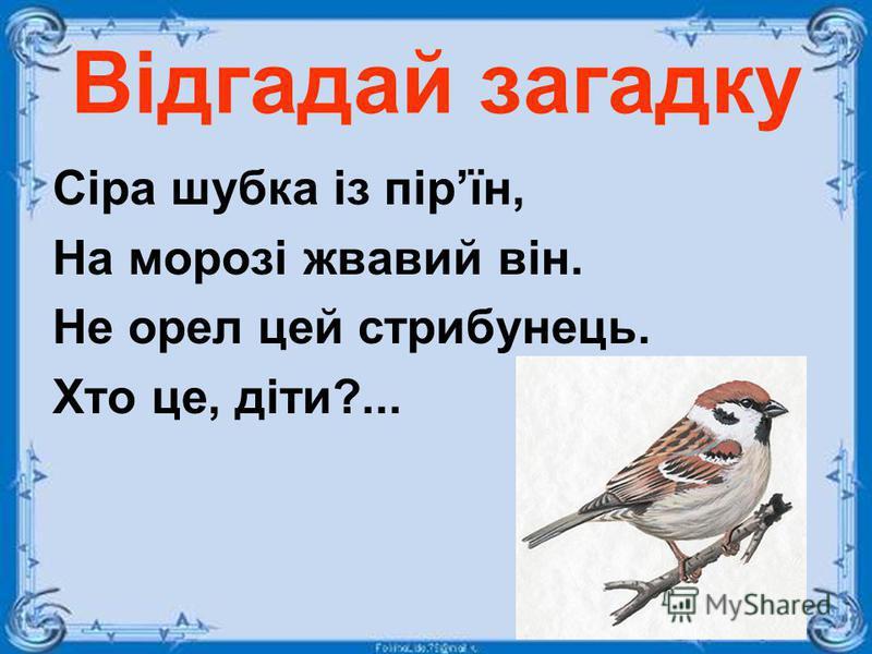 Відгадай загадку Сіра шубка із пірїн, На морозі жвавий він. Не орел цей стрибунець. Хто це, діти?...