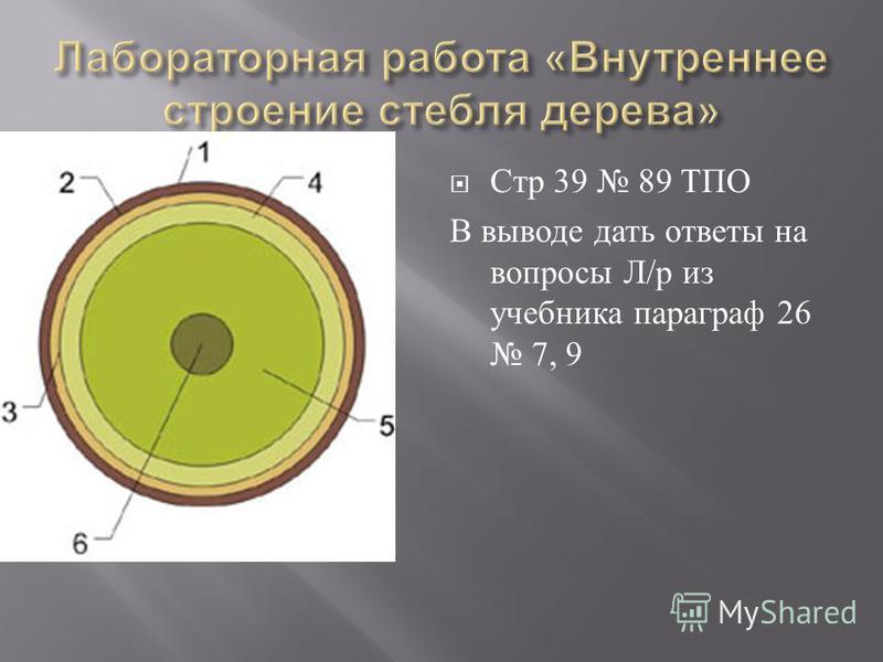 Стр 39 89 ТПО В выводе дать ответы на вопросы Л / р из учебника параграф 26 7, 9