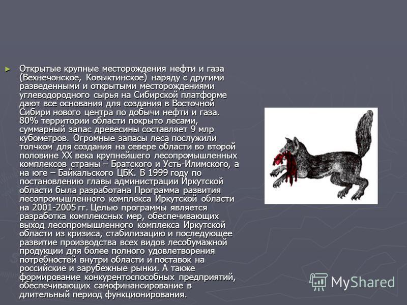 Открытые крупные месторождения нефти и газа (Вехнечонское, Ковыктинское) наряду с другими разведенными и открытыми месторождениями углеводородного сырья на Сибирской платформе дают все основания для создания в Восточной Сибири нового центра по добычи