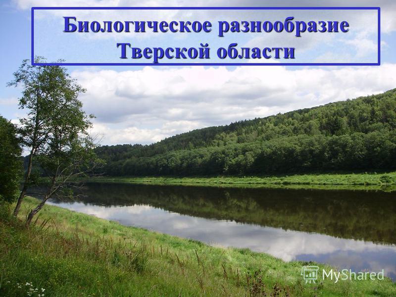 Биологическое разнообразие Тверской области