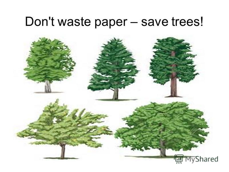 Don't waste paper – save trees!