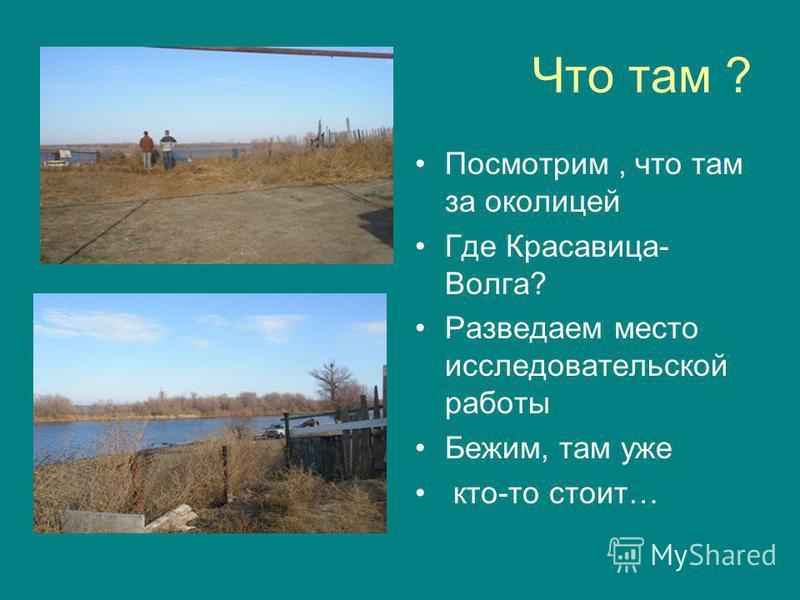 Что там ? Посмотрим, что там за околицей Где Красавица- Волга? Разведаем место исследовательской работы Бежим, там уже кто-то стоит…