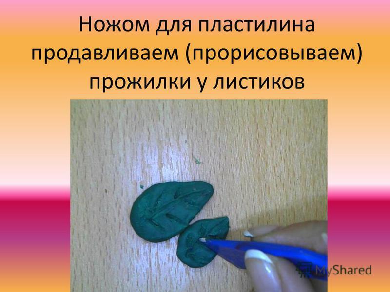 Ножом для пластилина продавливаем (прорисовываем) прожилки у листиков