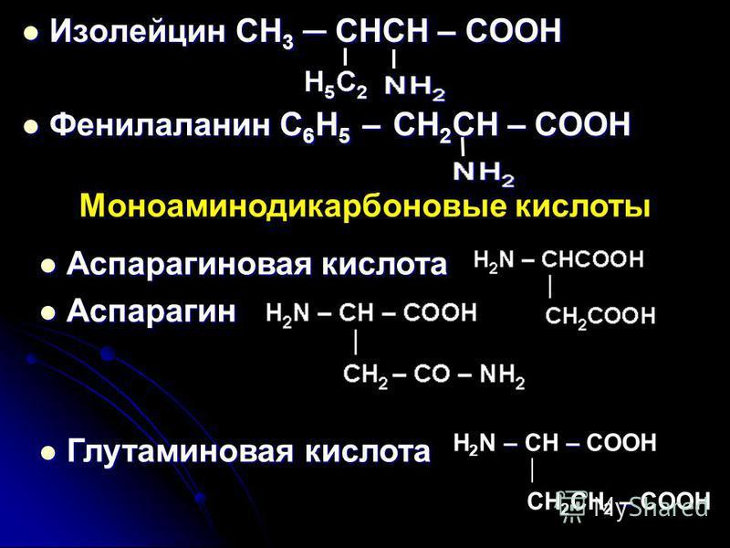 Изолейцин CH 3 CHCH – COOH Изолейцин CH 3 CHCH – COOH Фенилаланин C 6 H 5 – CH 2 CH – COOH Фенилаланин C 6 H 5 – CH 2 CH – COOH Моноаминодикарбоновые кислоты Аспарагиновая кислота Аспарагиновая кислота Аспарагин Аспарагин Глутаминовая кислота Глутами