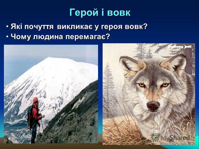 Герой і вовк Які почуття викликає у героя вовк? Які почуття викликає у героя вовк? Чому людина перемагає? Чому людина перемагає?