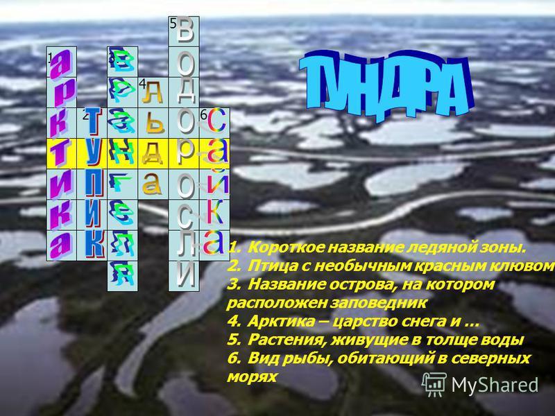 1. 2. 3. 4. 5. 6. 1. Короткое название ледяной зоны. 2. Птица с необычным красным клювом 3. Название острова, на котором расположен заповедник 4. Арктика – царство снега и … 5.Растения, живущие в толще воды 6. Вид рыбы, обитающий в северных морях