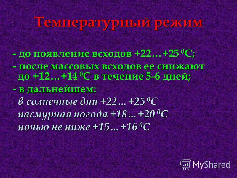 Температурный режим - до появление всходов +22…+25 0 С; - после массовых всходов ее снижают до +12…+14 0 С в течение 5-6 дней; - в дальнейшем: в солнечные дни +22…+25 0 С в солнечные дни +22…+25 0 С пасмурная погода +18…+20 0 С пасмурная погода +18…+