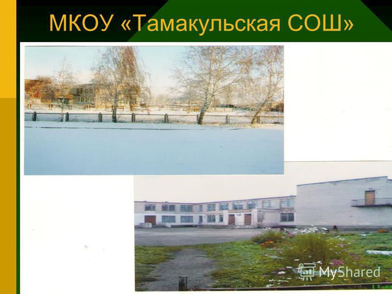 МКОУ «Тамакульская СОШ»
