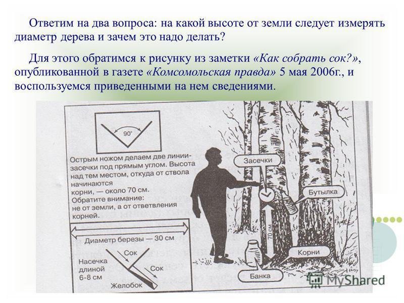 Ответим на два вопроса: на какой высоте от земли следует измерять диаметр дерева и зачем это надо делать? Для этого обратимся к рисунку из заметки «Как собрать сок?», опубликованной в газете «Комсомольская правда» 5 мая 2006 г., и воспользуемся приве