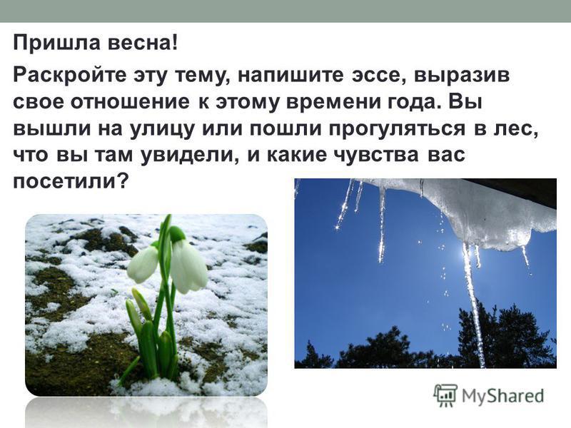 Пришла весна! Раскройте эту тему, напишите эссе, выразив свое отношение к этому времени года. Вы вышли на улицу или пошли прогуляться в лес, что вы там увидели, и какие чувства вас посетили?