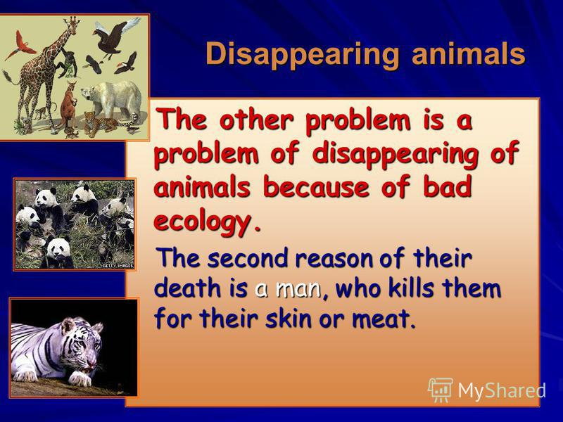 Disappearing animals Disappearing animals The other problem is a problem of disappearing of animals because of bad ecology. The other problem is a problem of disappearing of animals because of bad ecology. The second reason of their death is a man, w