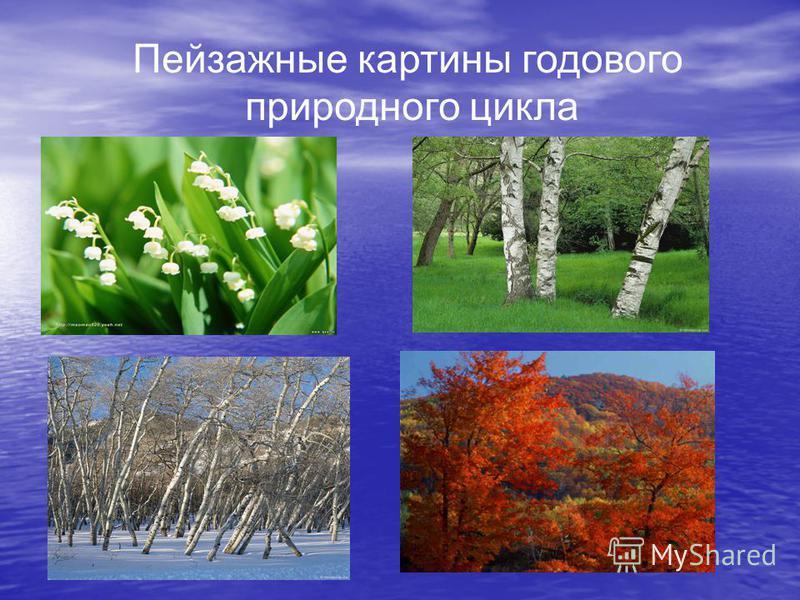 Пейзажные картины годового природного цикла