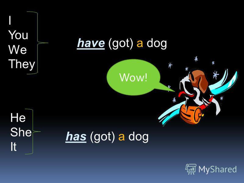 I You We They have (got) a dog He She It has (got) a dog Wow!