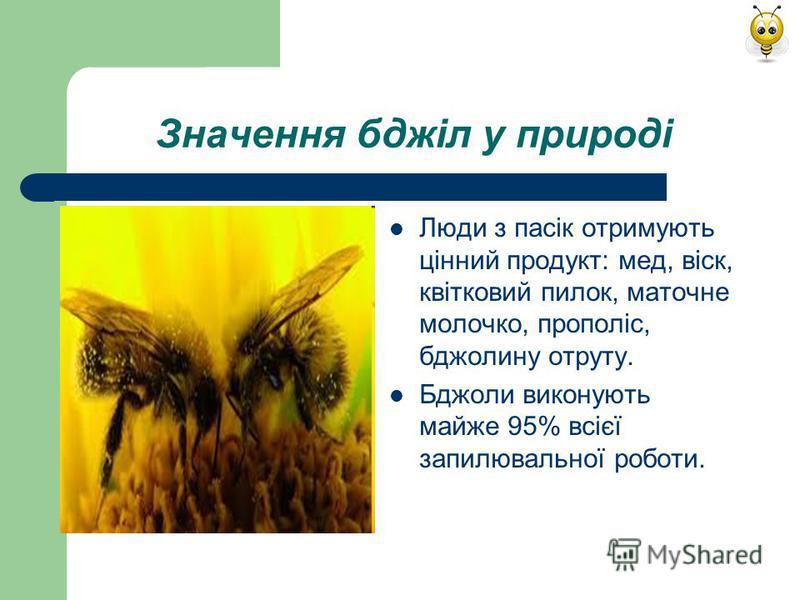 Значення бджіл у природі Люди з пасік отримують цінний продукт: мед, віск, квітковий пилок, маточне молочко, прополіс, бджолину отруту. Бджоли виконують майже 95% всієї запилювальної роботи.