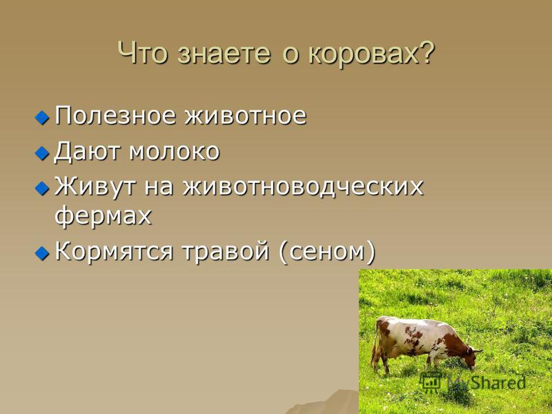Что знаете о коровах? Полезное животное Полезное животное Дают молоко Дают молоко Живут на животноводческих фермах Живут на животноводческих фермах Кормятся травой (сеном) Кормятся травой (сеном)