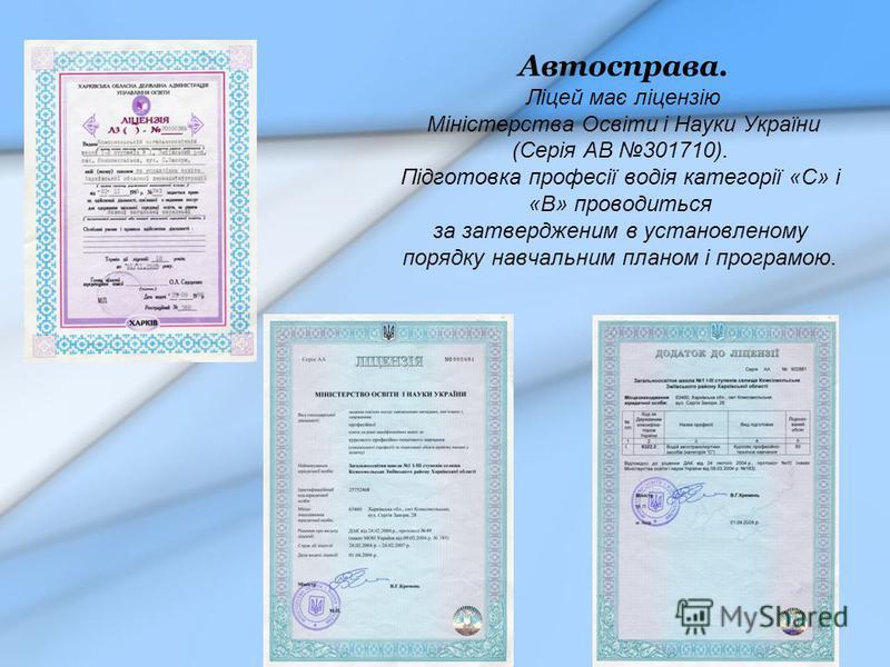 Автосправа. Ліцей має ліцензію Міністерства Освіти і Науки України (Серія АВ 301710). Підготовка професії водія категорії «С» і «В» проводиться за затвердженим в установленому порядку навчальним планом і програмою.