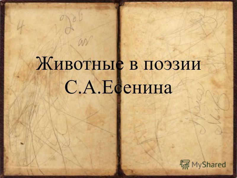 Животные в поэзии С.А.Есенина