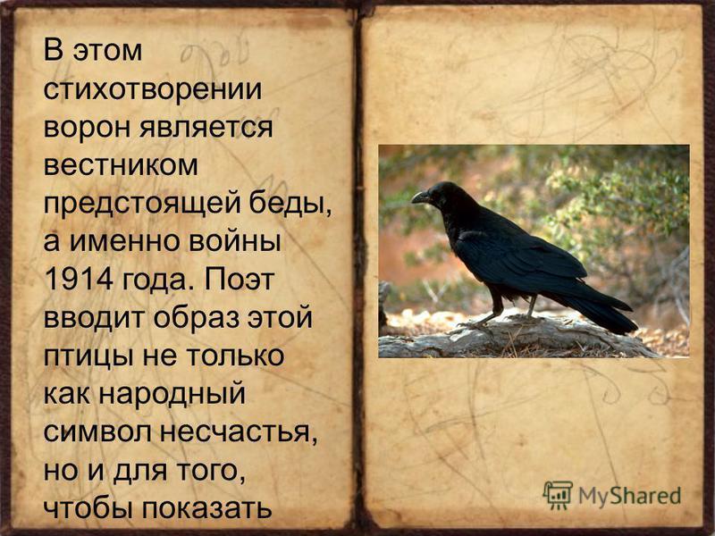 В этом стихотворении ворон является вестником предстоящей беды, а именно войны 1914 года. Поэт вводит образ этой птицы не только как народный символ несчастья, но и для того, чтобы показать свое отрицательное отношение к происходящим событиям, пережи
