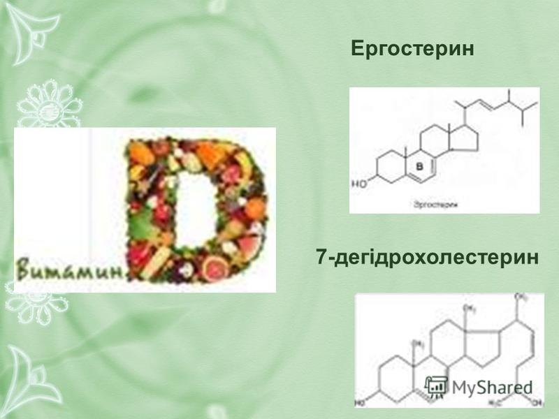 Ергостерин 7-дегідрохолестерин