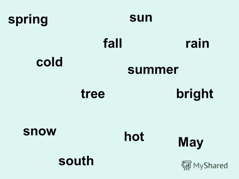 spring cold hot bright fall tree snow sun summer rain May south