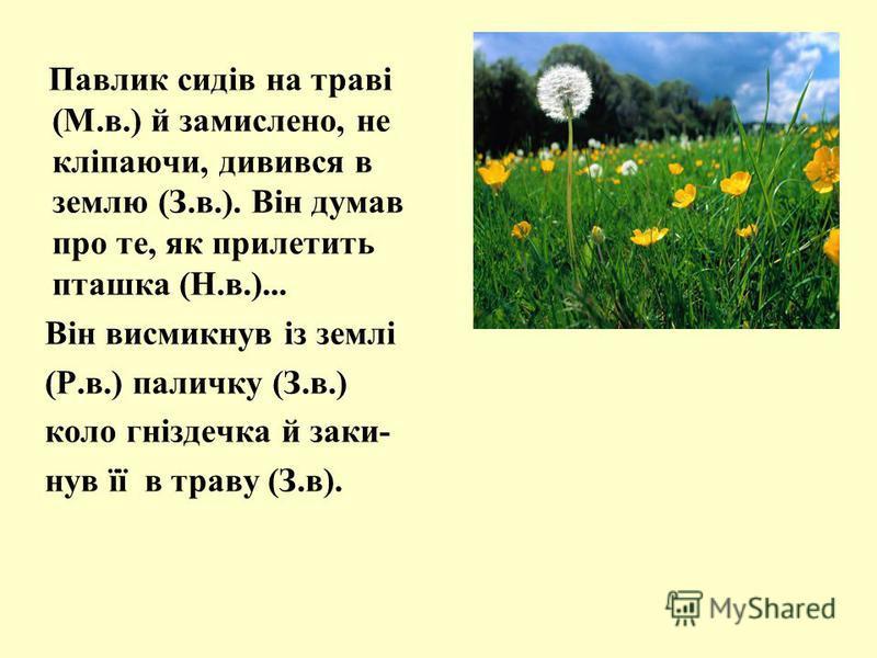 Павлик сидів на траві (М.в.) й замислено, не кліпаючи, дивився в землю (З.в.). Він думав про те, як прилетить пташка (Н.в.)... Він висмикнув із землі (Р.в.) паличку (З.в.) коло гніздечка й заки- нув її в траву (З.в).