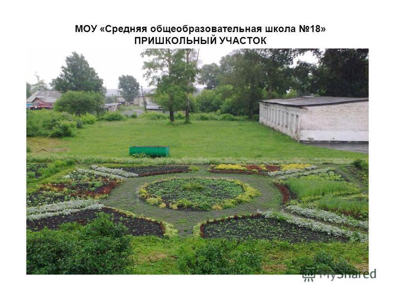 МОУ «Средняя общеобразовательная школа 18» ПРИШКОЛЬНЫЙ УЧАСТОК