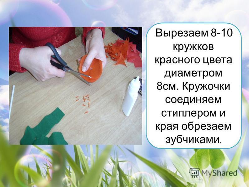 Вырезаем 8-10 кружков красного цвета диаметром 8 см. Кружочки соединяем стиплером и края обрезаем зубчиками.