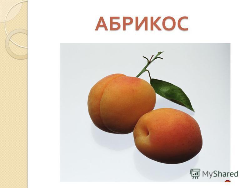 АБРИКОС Пушистый плод на ветке рос. Сладкий, сочный....