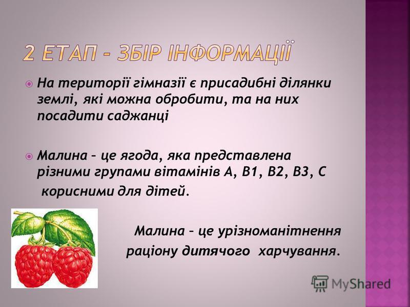 На території гімназії є присадибні ділянки землі, які можна обробити, та на них посадити саджанці Малина – це ягода, яка представлена різними групами вітамінів А, В1, В2, В3, С корисними для дітей. Малина – це урізноманітнення раціону дитячого харчув