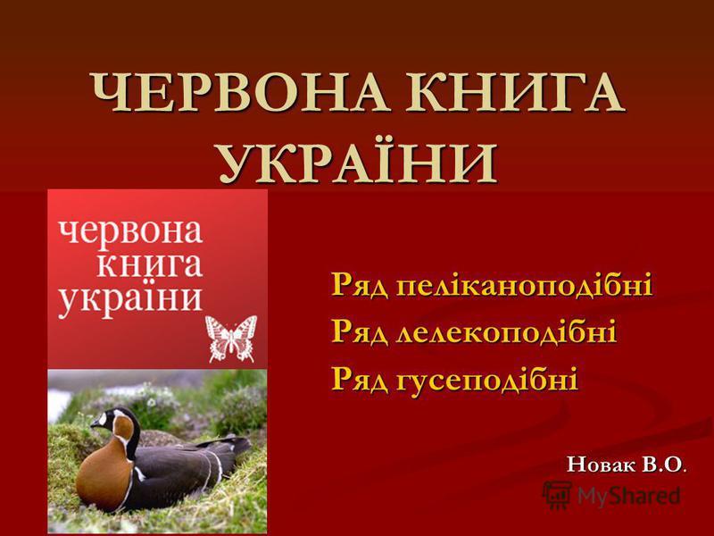 ЧЕРВОНА КНИГА УКРАЇНИ Ряд пеліканоподібні Ряд лелекоподібні Ряд гусеподібні Новак В.О.