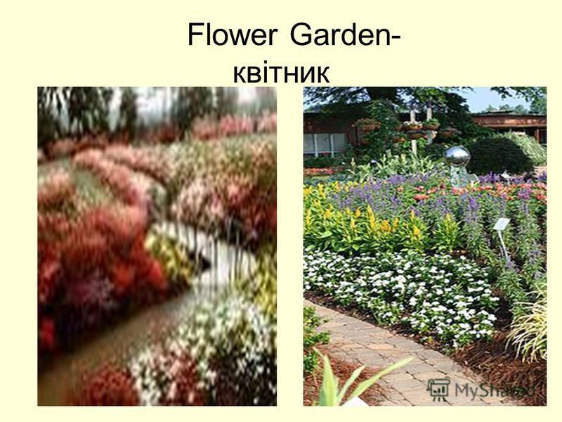 Flower Garden- квітник