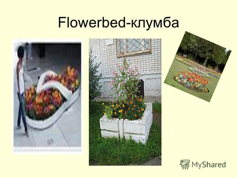 Flowerbed-клумба