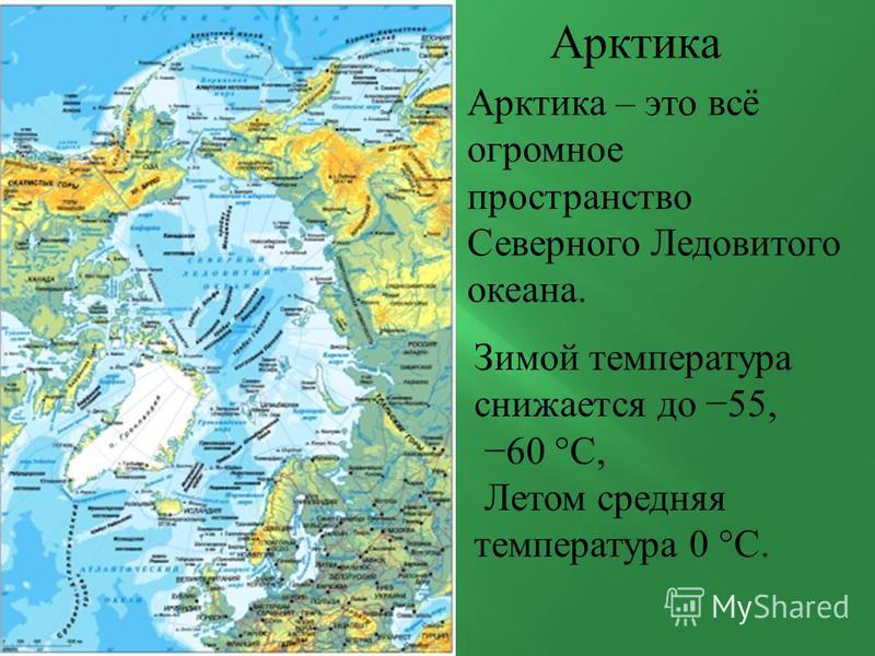 Арктика Арктика – это всё огромное пространство Северного Ледовитого океана. Зимой температура снижается до 55, 60 °C, Летом средняя температура 0 °C.