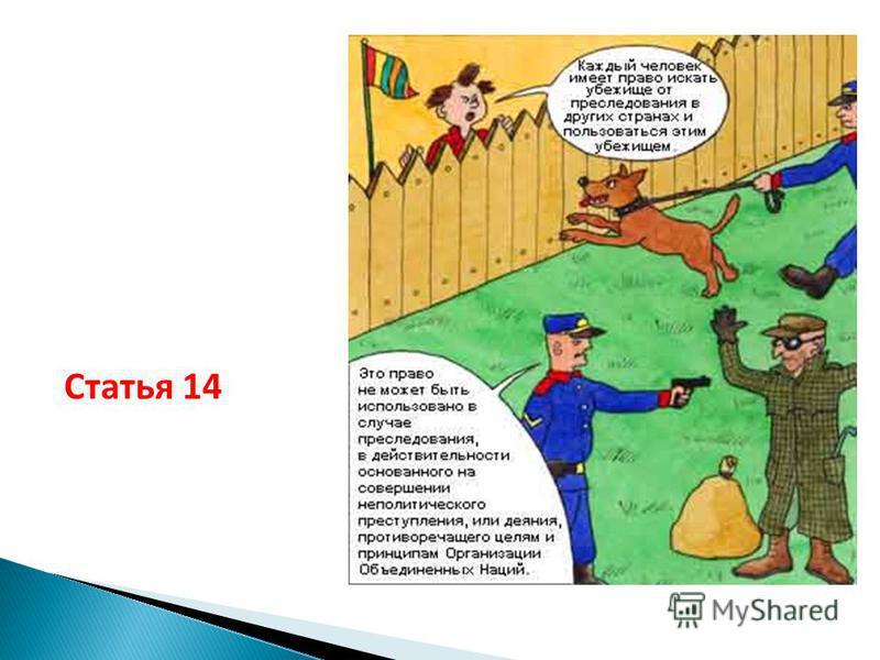 Статья 14