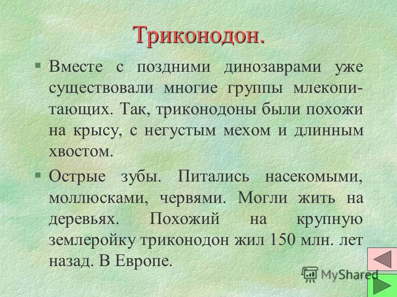 36 Триконодон.