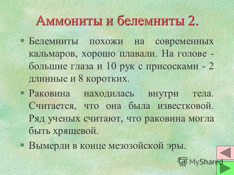 6 Аммониты и белемниты 1. §Аммониты жили в раковине, свернутой спиралью. Так их назвали за сходство с рогами барана - древне-египетского бога Аммона. Внутри раковина разделялась на камеры. В самой большой - само животное, в остальных - газ. §Размеры