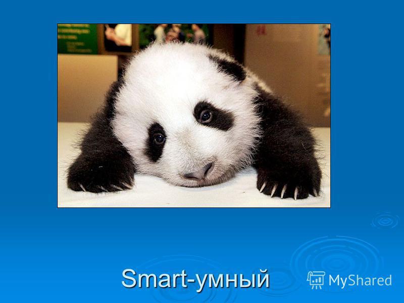 Smart-умный