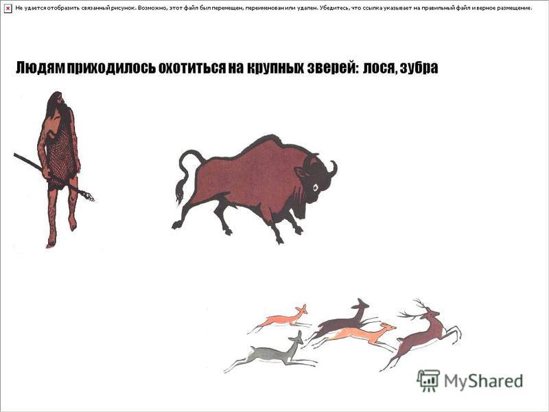 Людям приходилось охотиться на крупных зверей: лося, зубра