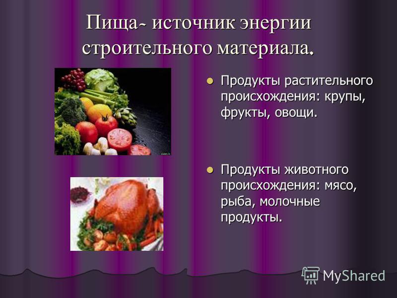 Пища - источник энергии строительного материала. Продукты растительного происхождения: крупы, фрукты, овощи. Продукты растительного происхождения: крупы, фрукты, овощи. Продукты животного происхождения: мясо, рыба, молочные продукты. Продукты животно