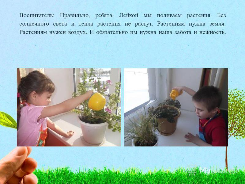 Воспитатель: Правильно, ребята. Лейкой мы поливаем растения. Без солнечного света и тепла растения не растут. Растениям нужна земля. Растениям нужен воздух. И обязательно им нужна наша забота и нежность.