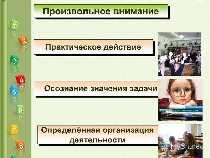 Произвольное внимание Практическое действие Осознание значения задачи Определённая организация деятельности