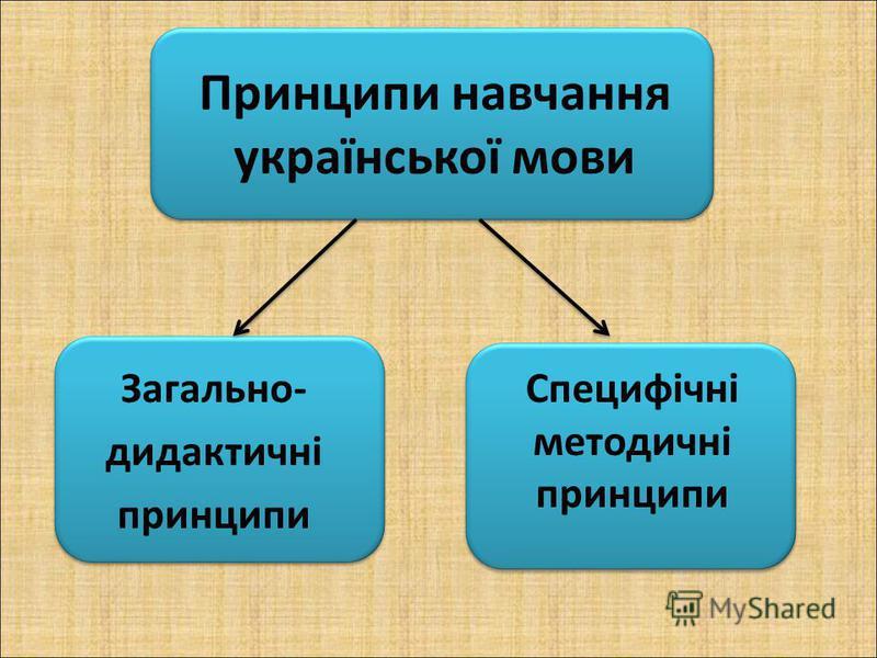 Принципи навчання української мови Загально- дидактичні принципи Специфічні методичні принципи