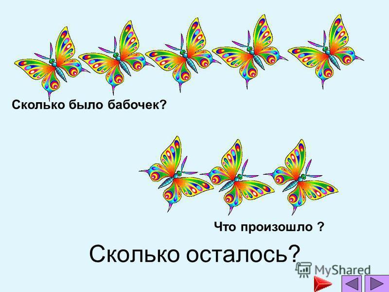 Сколько осталось? Сколько было бабочек? Что произошло ?