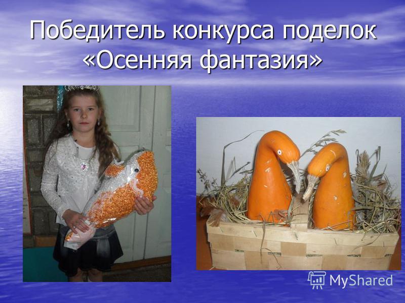 Победитель конкурса поделок «Осенняя фантазия»