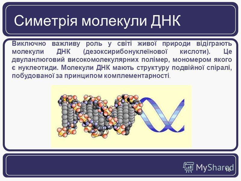 16 Симетрія молекули ДНК Виключно важливу роль у світі живої природи відіграють молекули ДНК (дезоксирибонуклеїнової кислоти). Це двуланлюговий високомолекулярних полімер, мономером якого є нуклеотиди. Молекули ДНК мають структуру подвійної спіралі,