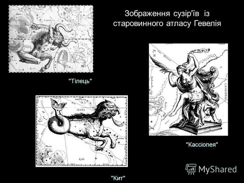 Зображення сузір'їв із старовинного атласу Гевелія Тілець Кит Кассіопея