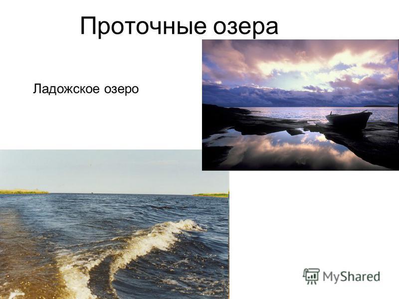 Проточные озера Ладожское озеро